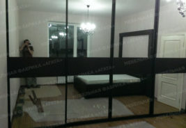 шкаф шкафы-купе на заказ Воронеж - зеркало